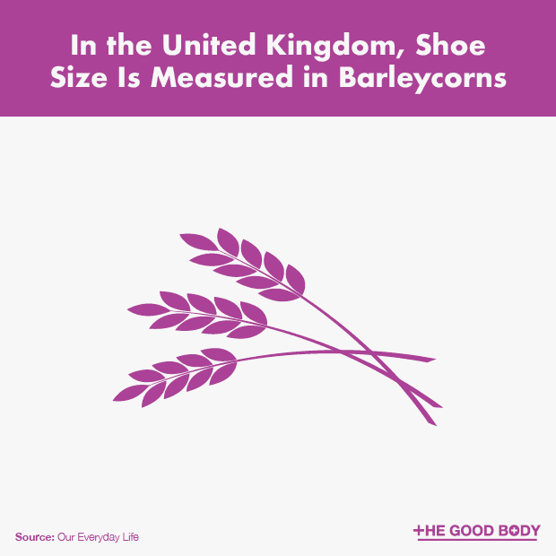 Shoe Size Is Measured in Barleycorns in the UK