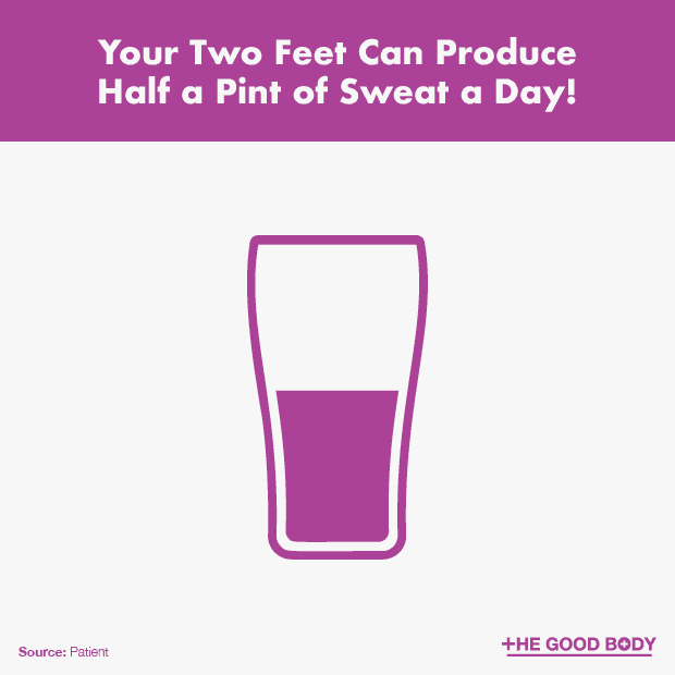 Your Two Feet Can Produce Half a Pint of Sweat a Day