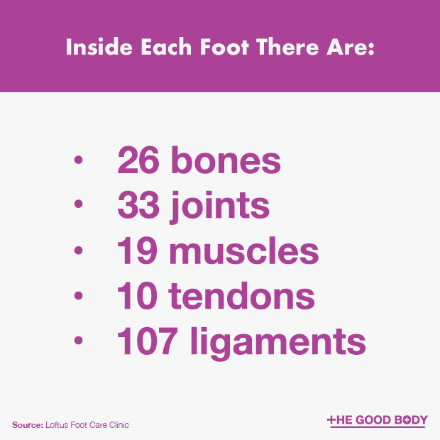 Inside Each Foot There Are 26 Bones