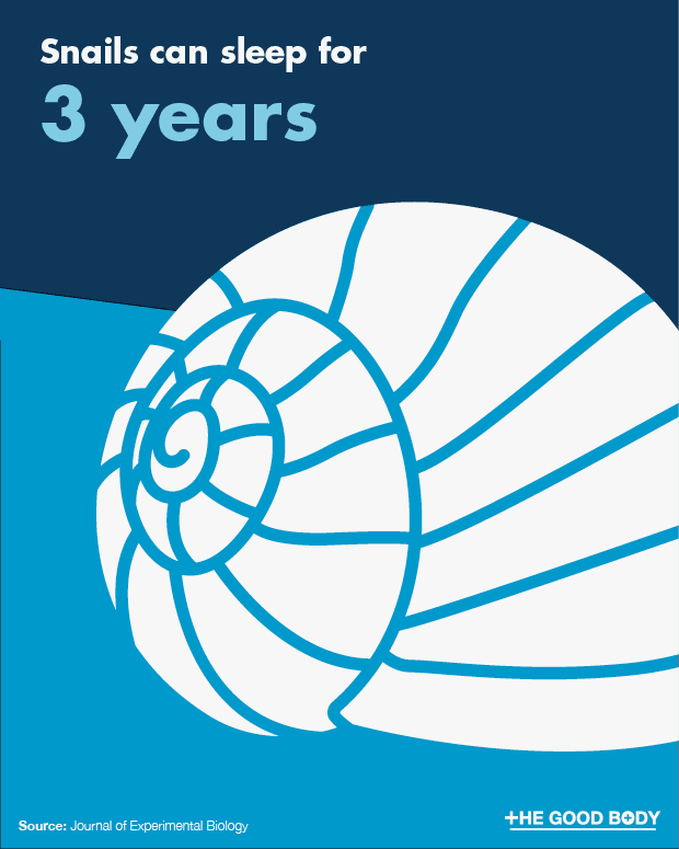 Snails can sleep for 3 years