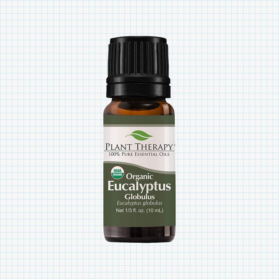 Plant Therapy Eucalyptus Organic Essential Oil