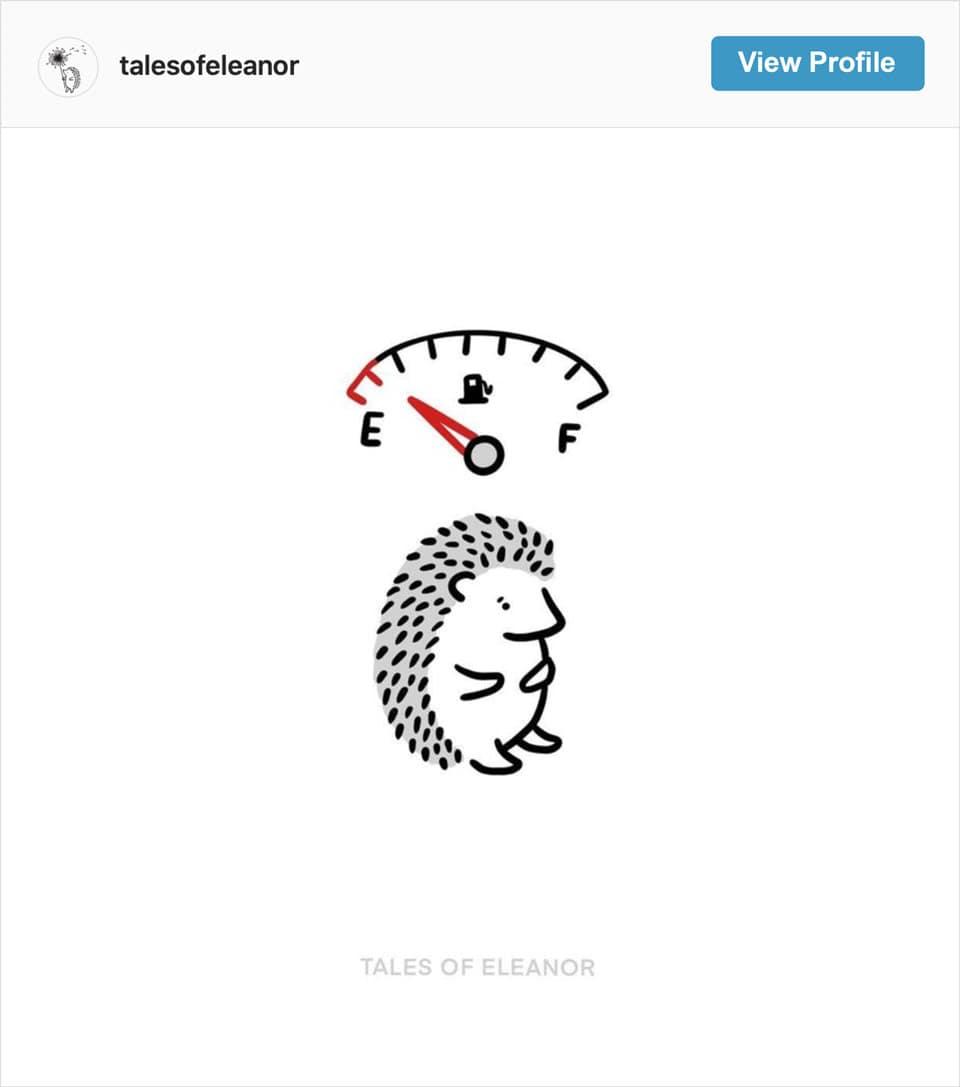 Follow Tales of Eleanor's Instagram account